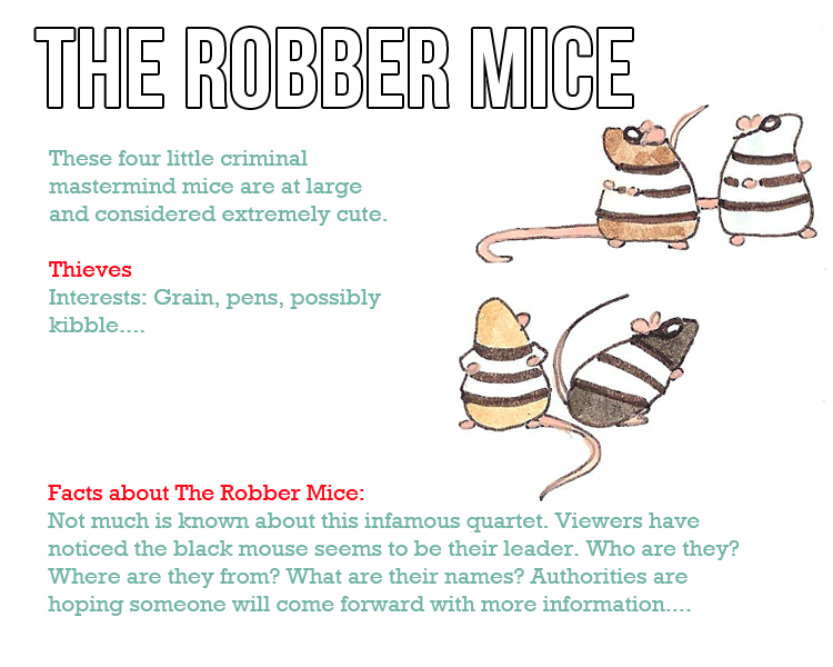 Character profile New Robber Mice