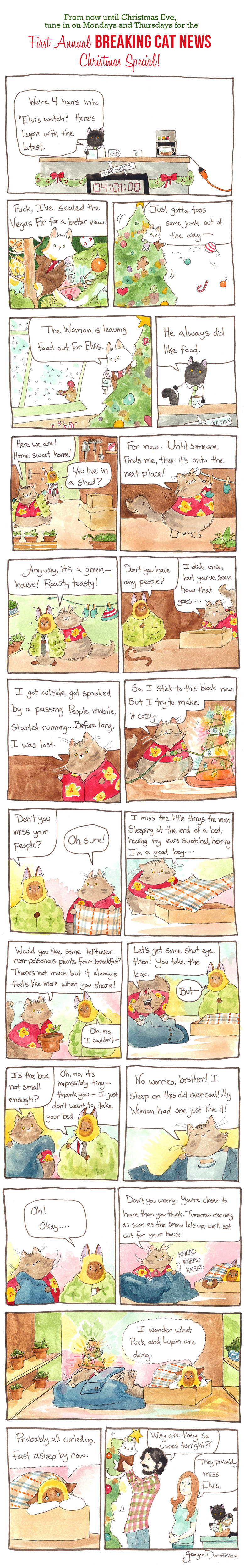 Breaking Cat News Christmas Special Part Four