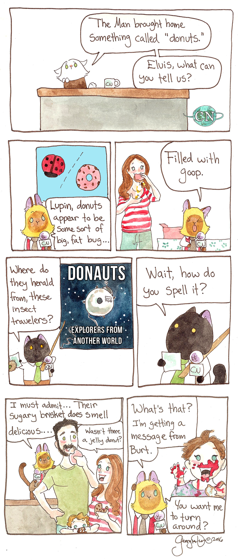 The Man brought home donuts. – BREAKING CAT NEWS f0b9db1f1