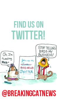 Book pin Twitter